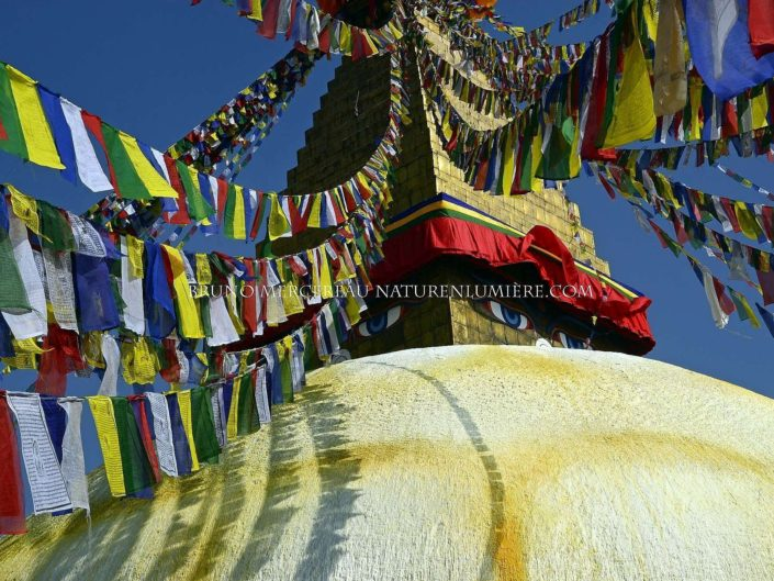 la grande stuppa à katmandu